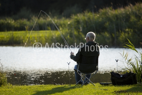 Angler playing a fish on a summers evening